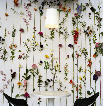 Flower wallpaper by tensta konsthall front