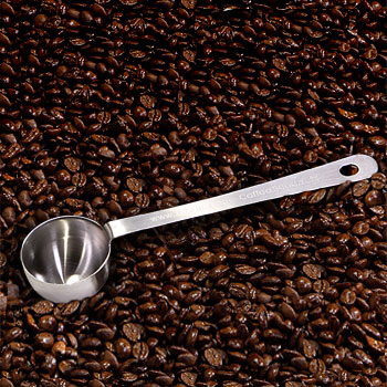 Stainless Steel Coffee Scoop by Zabar's
