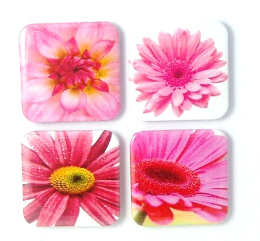 Magnets - Pretty In Pink - 4 Fridge Magnets on Luulla
