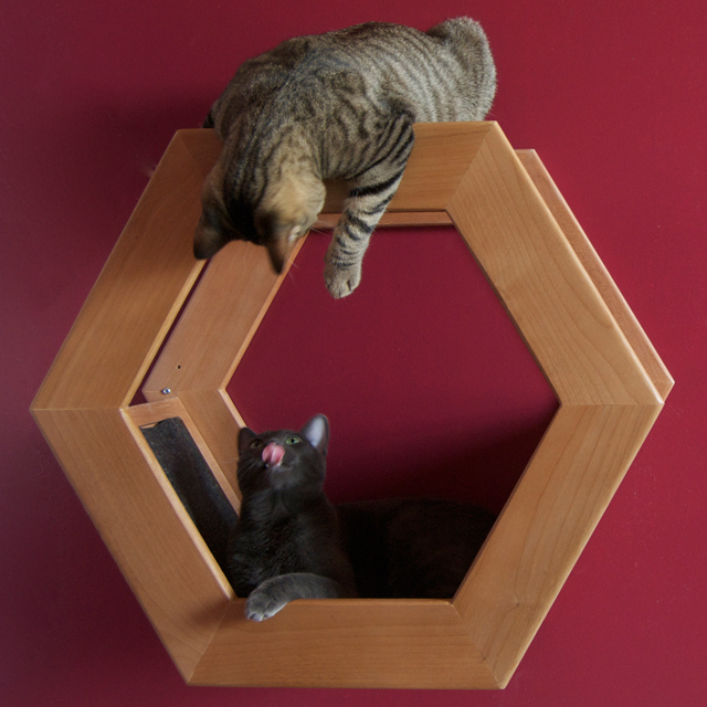 Fancy - HabiCat Modern Perch