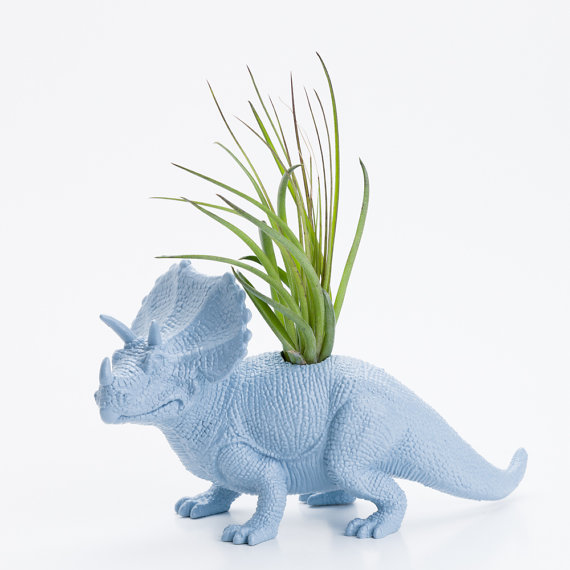 Dinosaur Planter with Air Plant Room Decor, College Dorm Ornament, Triceratops, Plants and Edibles, Powder Blue