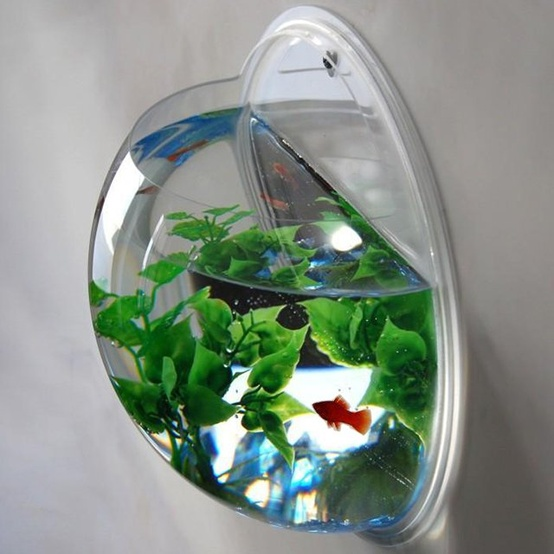 Wall Mount Fishbowl - Clear : Target