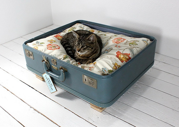 Fresh Start for Vintage Suitcases: Pet Furniture from Atomic Attic