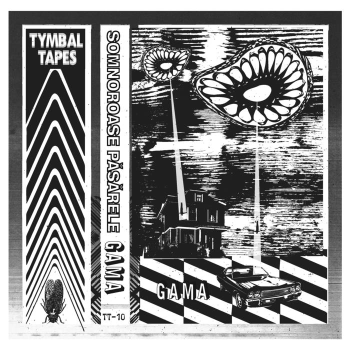 ▶︎ GAMA | Tymbal Tapes