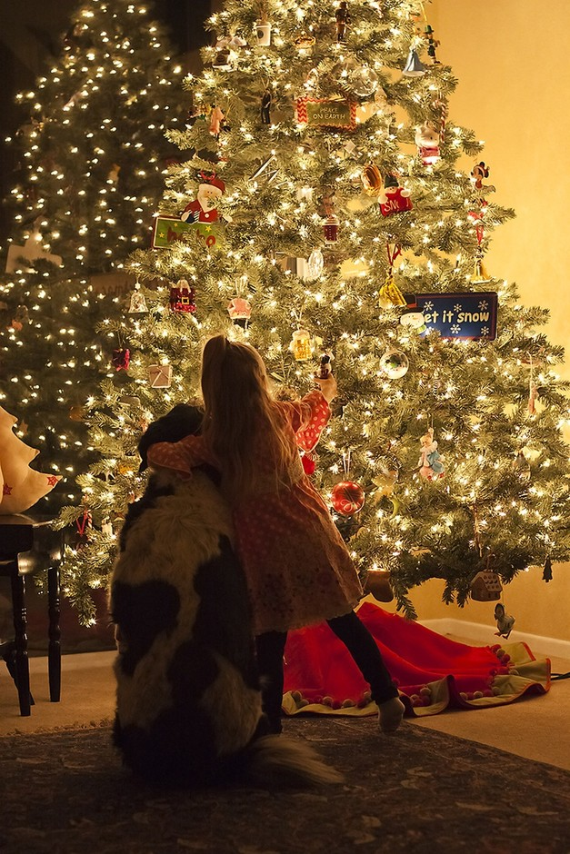 I hope I remember to look at this at Christmas ... | The Most Wonderf…