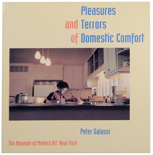 pleasures and terrors of domestic comfort essay Turyn has been included in many publications and exhibitions, including the pleasures and terrors of domestic comfort, vanishing presence, between here and there.