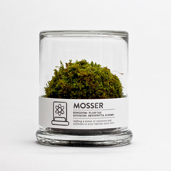 Mosser - The Dieline - The #1 Package Design Website -