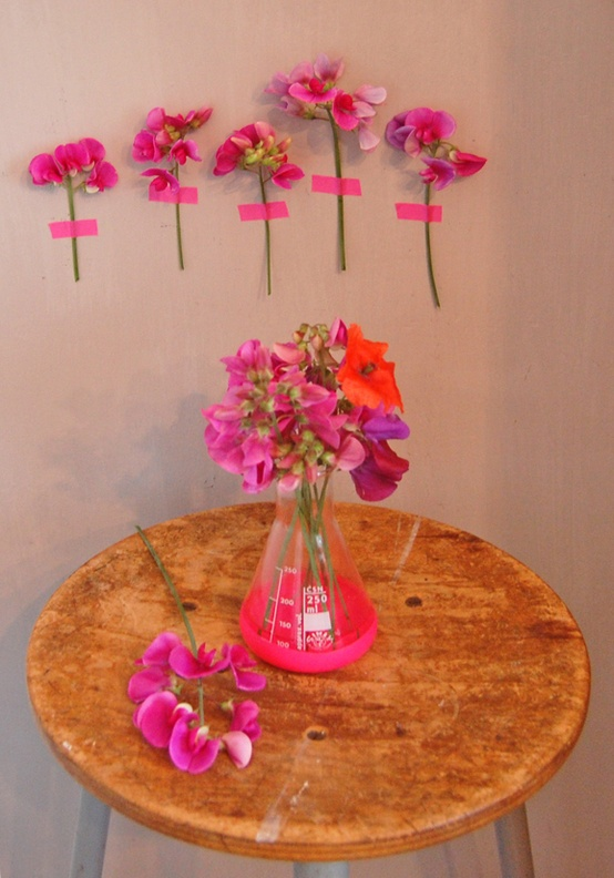 Interiors / some pink flowers|all the luck in the world-blog