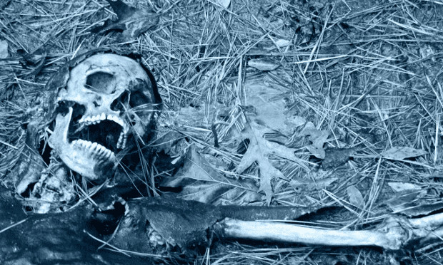 Life after death: the science of human decomposition | Science | The Guardian