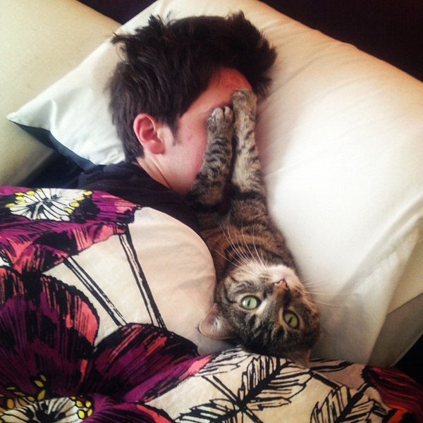 with cat / -