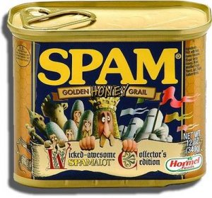 Welcome to Spam-alot! | NM's Writers bloq