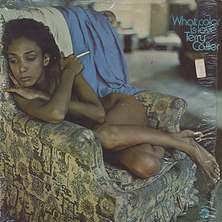 Terry Callier / What Color Is Love   Cadet, (LP), Soul / Funk, EX-/VG   中古レコード通販 大阪 Root Down Records
