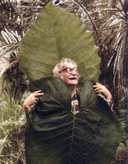 Serenity in the Garden: Roberto Burle Marx and His Wave Pattern