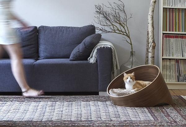 Covo Modern Cat Bed | Tuft + Paw