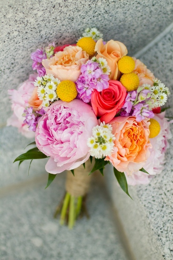 flowers / colorful