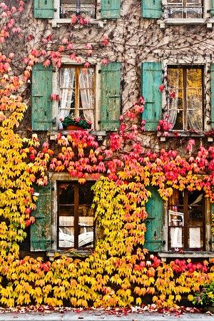 i want to go to there / swiss autumn
