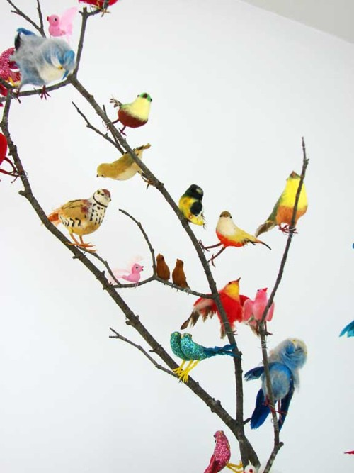 think colorfully / #thinkcolorfully all the pretty birds
