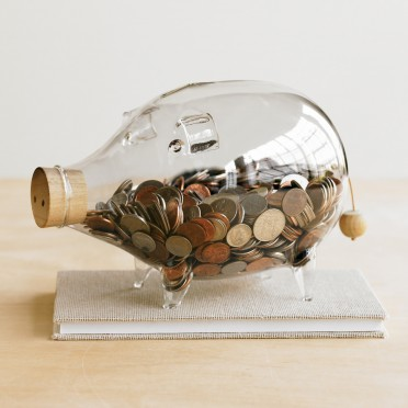 Glass Piggy Bank - VivaTerra