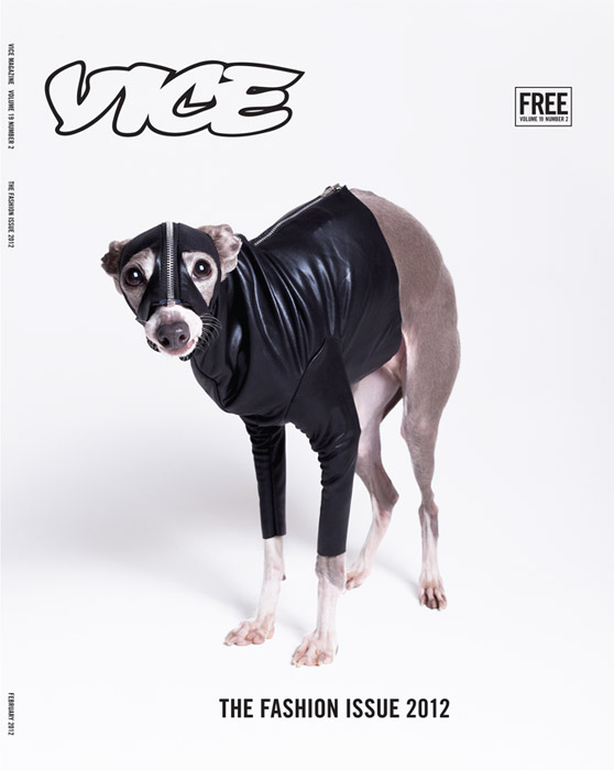 Vice Style