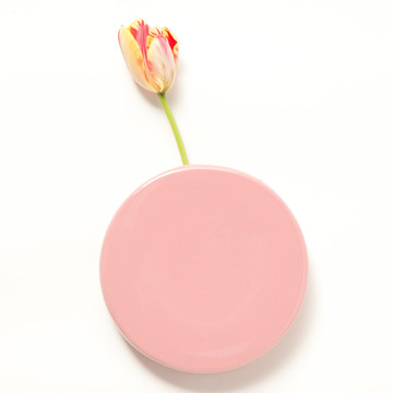 Chive dot pink wall vase sumally for Dot wall vase