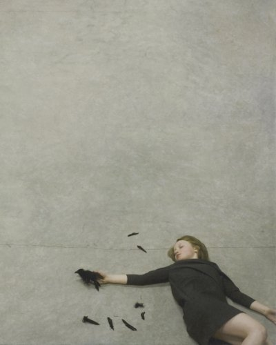 Amazon.co.jp: Counterpoint: Robert Parkeharrison, Shana Parkeharrison: 洋書