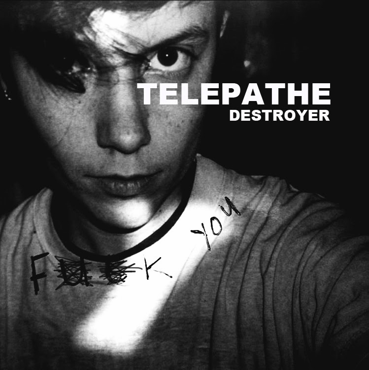 Telepathe – Destroyer | Consequence of Sound