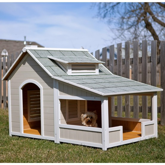 Precision Outback Savannah Dog House with Porch - Dog Houses at Dog Houses