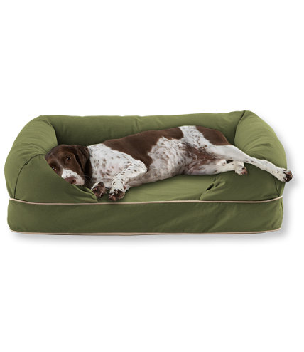 Premium Dog Couch | Free Shipping at L.L.Bean