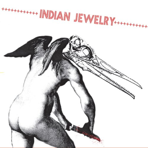 Amazon.co.jp: We Are the Wild: Indian Jewelry: 音楽