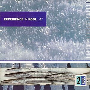 Various - Experience In Kool. -1° (CD) at Discogs