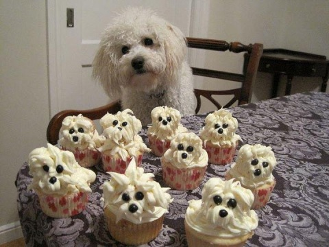 Inspired by… fluffy white dog cupcakes « PR Canapés by Charmaine Chan
