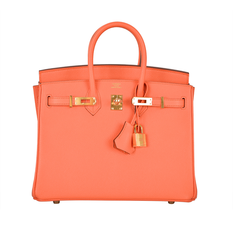 NEW CANDY COLLECTION HERMES BIRKIN BAG 25cm MANGUE GORGEOUS at 1stdibs