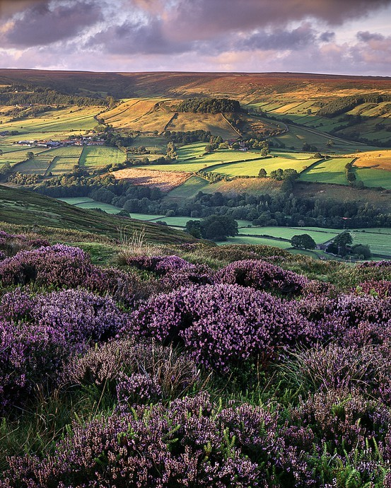 Colors / Rosedale, North Yorkshire, England by Ross J Brown