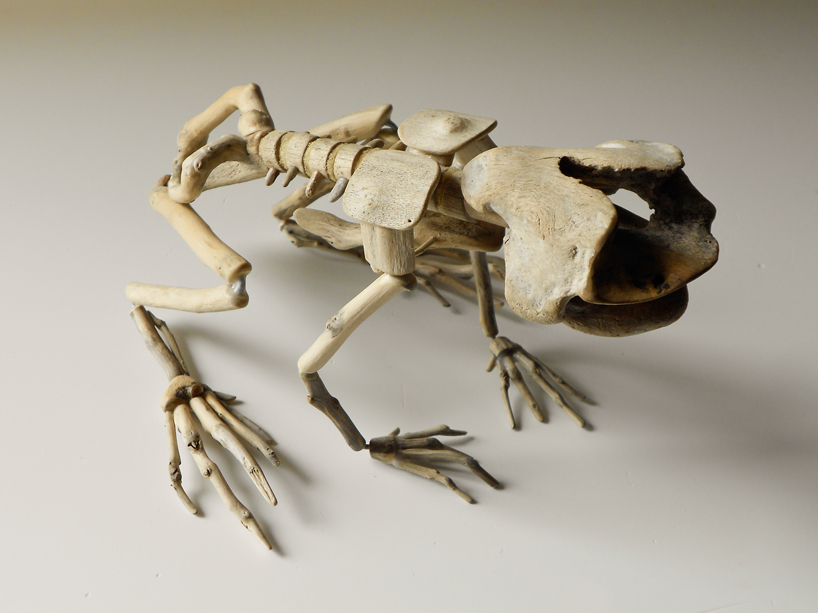 giovanni longo recovers wood to form fragile skeletons series