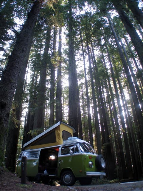 in the woods. | Tiny House