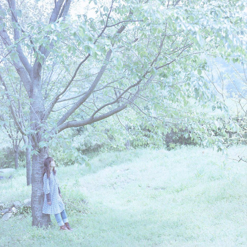 "look ""inner forest"" : digi*ana*logue"