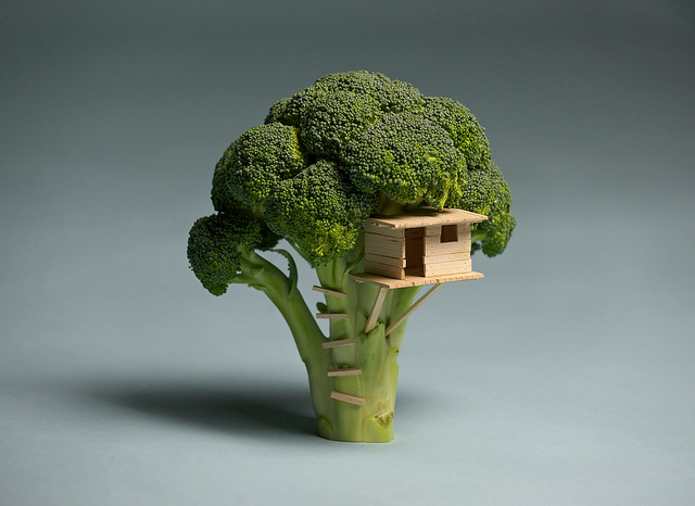 Broccoli House | Flickr - Photo Sharing!