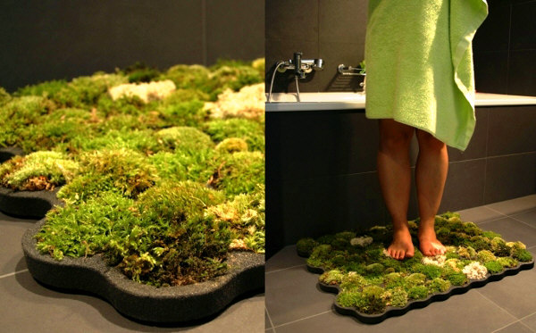 Grow some moss in your bathroom | Matador Network