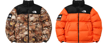 Nuptse Jacket with Packable hood
