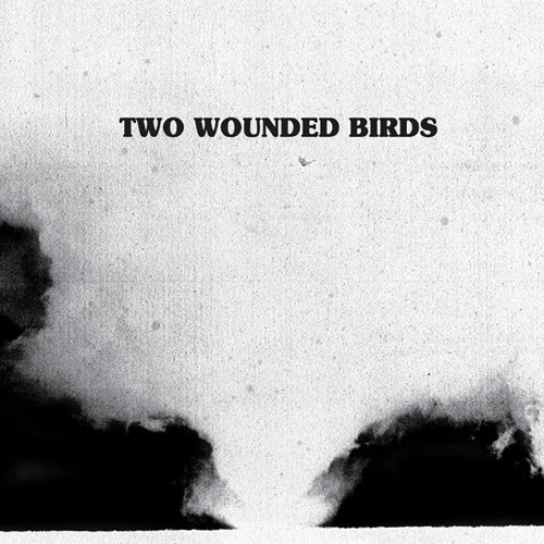 Amazon.co.jp: TWO WOUNDED BIRDS: TWO WOUNDED BIRDS: 音楽