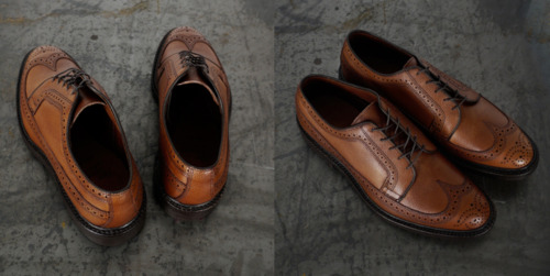 Anchor Division - livin' fast   Allen Edmonds MacNeil Wing tipped Brogues Made...