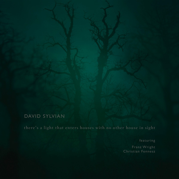 { davidsylvian.com } 'there's a light that enters houses with no other house in sight'