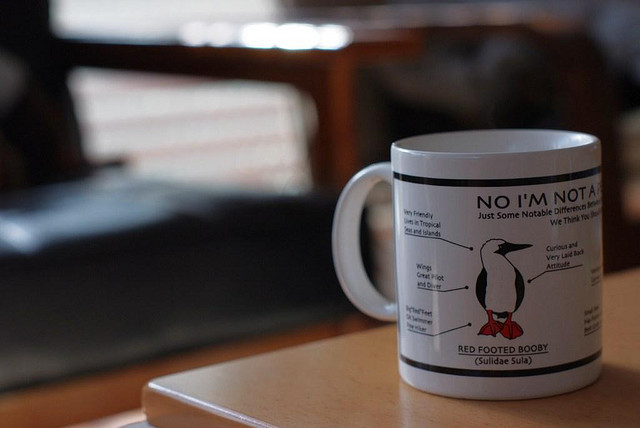 a cup of coffee | Flickr - Photo Sharing!