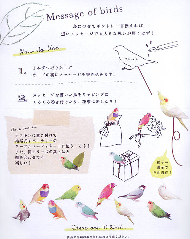 【Greeting Life】Message of birds/オカメ・ラブバ・コキン・文鳥 MM-66 鳥専門店 BIRD MORE