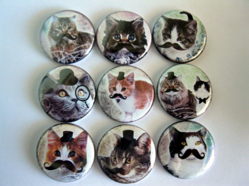 Set of Nine Cats with Mustaches Button Magnet by Getagripmagnets