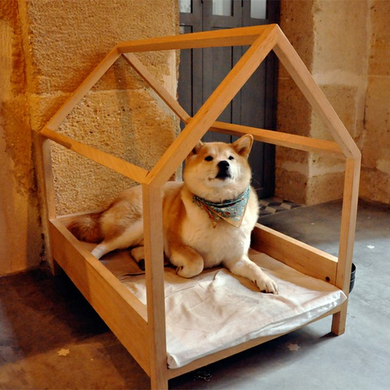 cutie animals / Wood-frame Bed and Akita