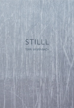 Stilll / Terri Weifenbach / ON READING Online Shop