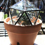 Stained Glass Bevel Geodesic Plant Topper by HalonaGlass on Etsy