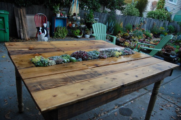 Spotted: DIY Succulent Planter Table from Pallets   greenUPGRADER