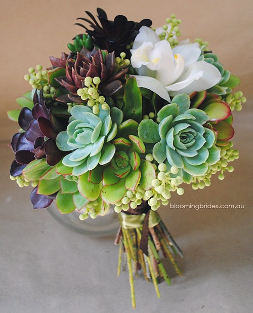 flowers / succulent bouquet